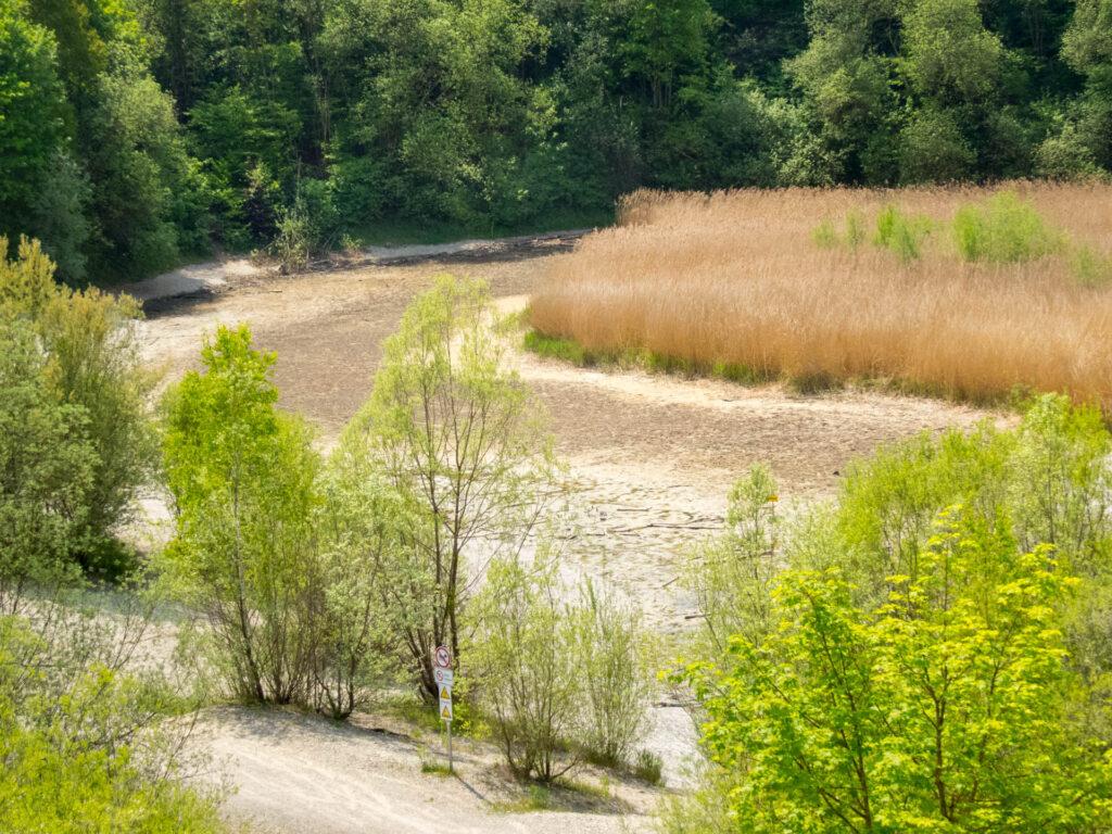 Biotop Rothsee