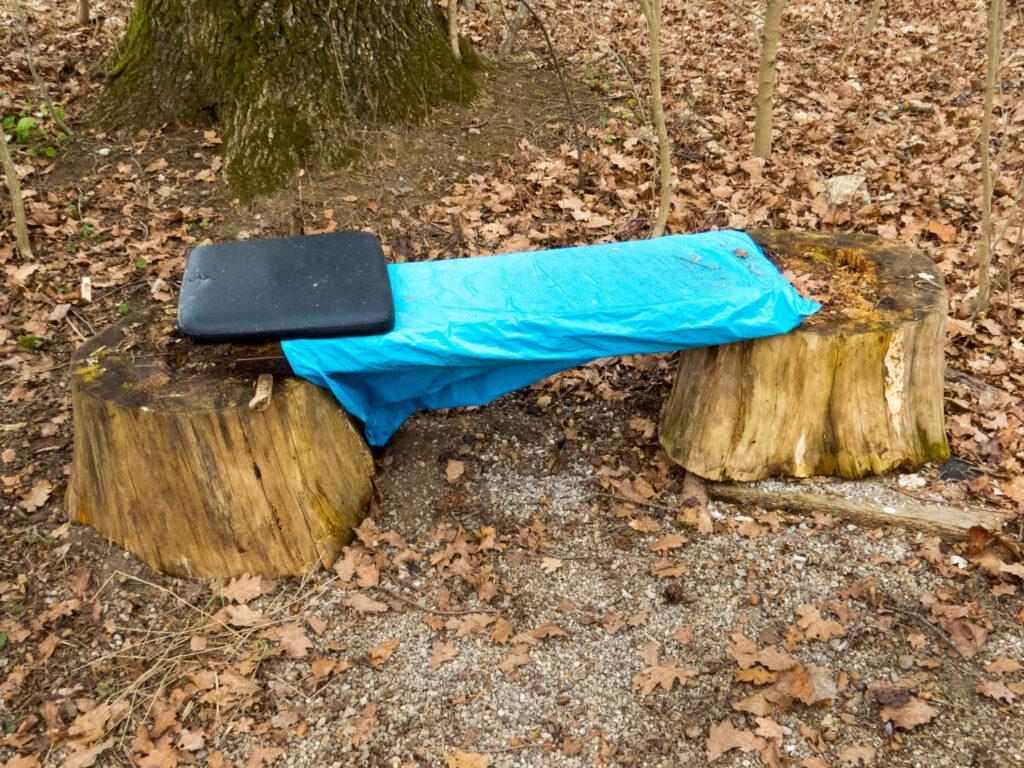 Ein Bett im Waldfeld